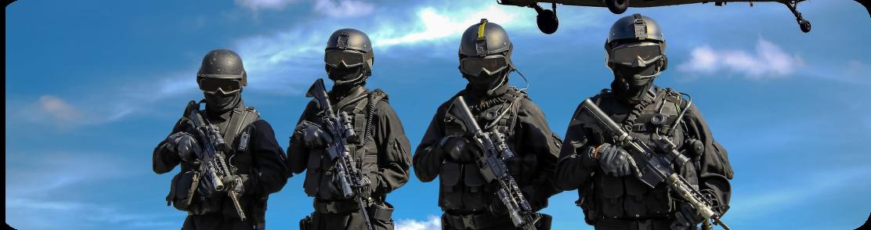 Частная профессиональная охрана во Франции